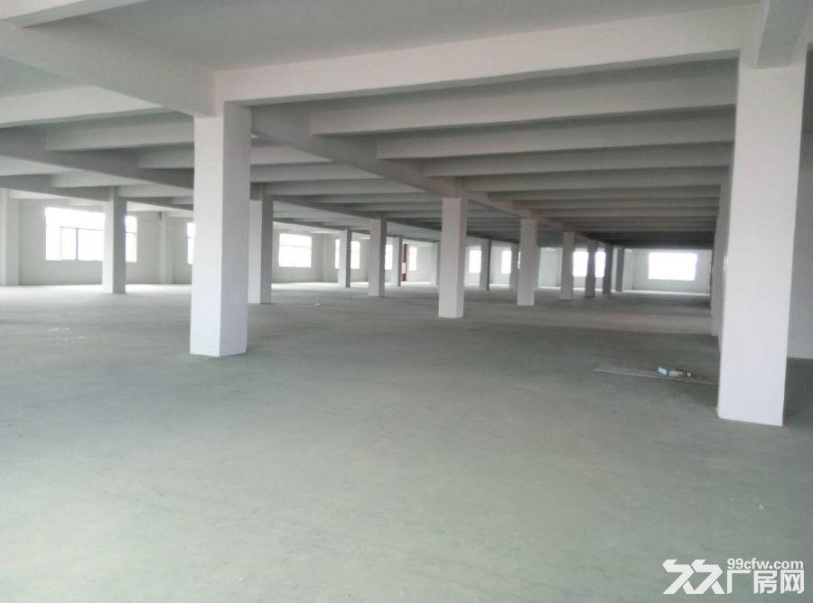 (3台20吨重的货梯)睦州新沙工业园2楼838方厂房招租-图(2)