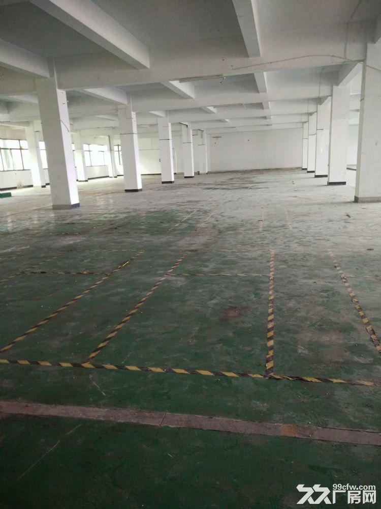 杭州大江东10亩土地12600方厂房出售-图(1)