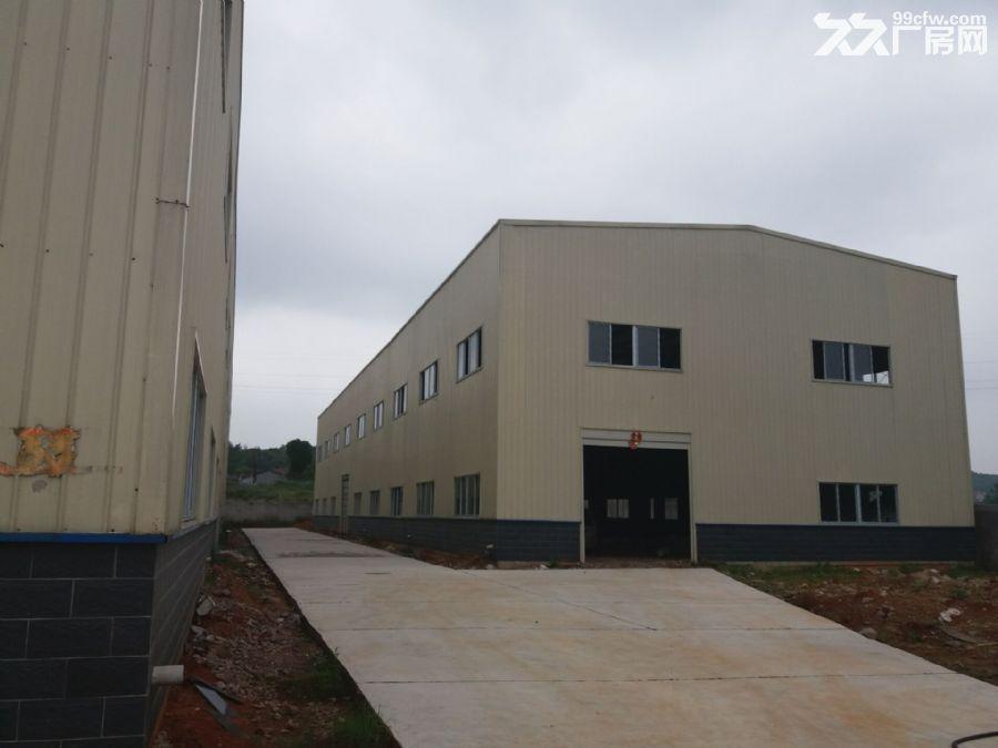 城郊结合部全新5200平米钢构厂房出租出售或自有项目联营-图(3)