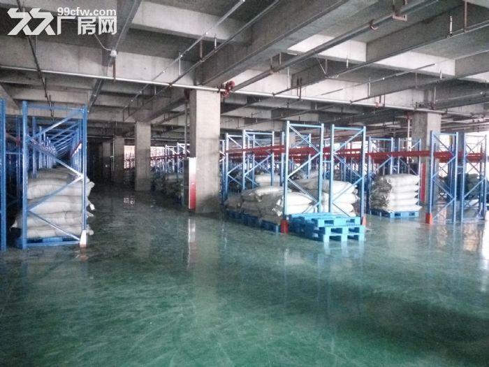 马厂湖镇全新大型厂房7800五层5.5元一平-图(4)