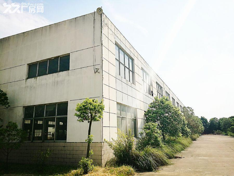 来安经济开发区标准化厂房4500平方招租-图(2)