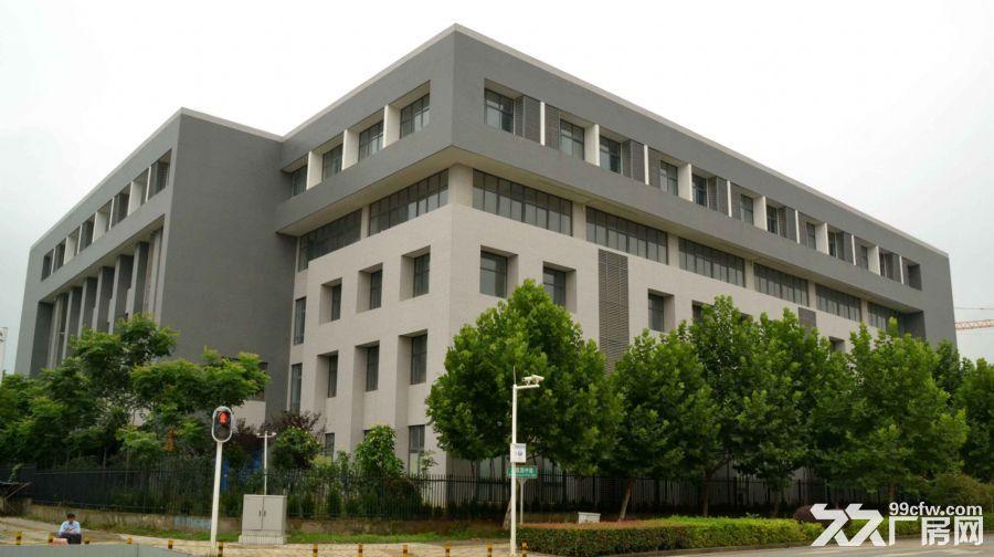 全新独栋厂房,办公楼业主直接招租,免中介费-图(2)
