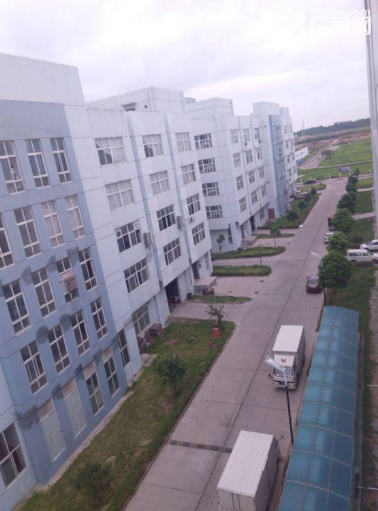 服装厂电子厂通用厂房出租-图(7)