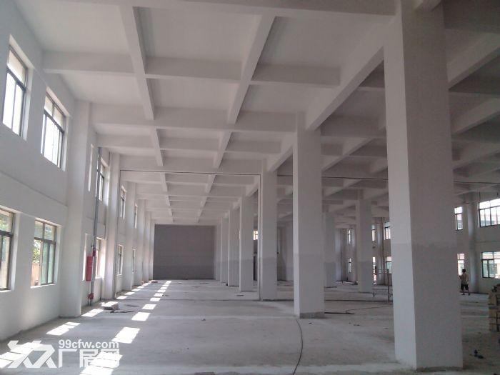 一楼2000工业园厂房出租(电大)-图(1)