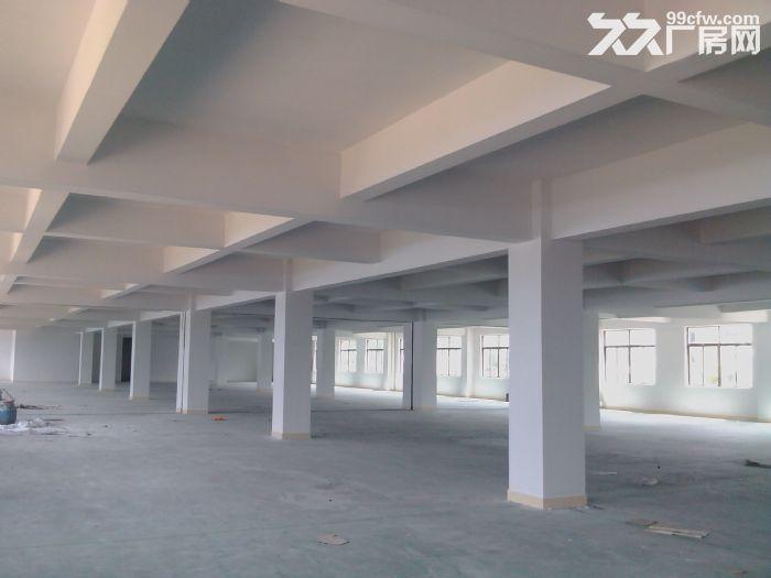 一楼2000工业园厂房出租(电大)-图(2)