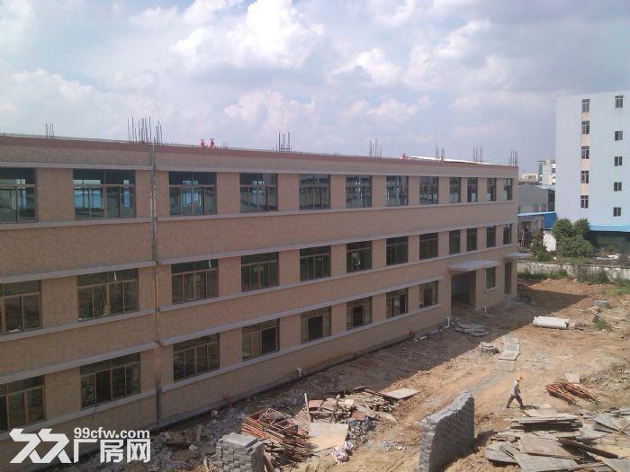 一楼2000工业园厂房出租(电大)-图(3)
