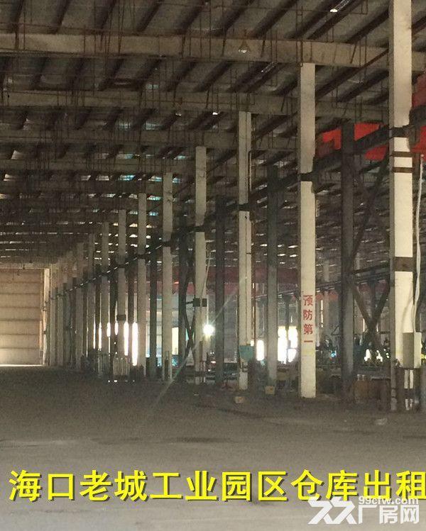 海口老城独门独院厂房仓库出租-图(5)