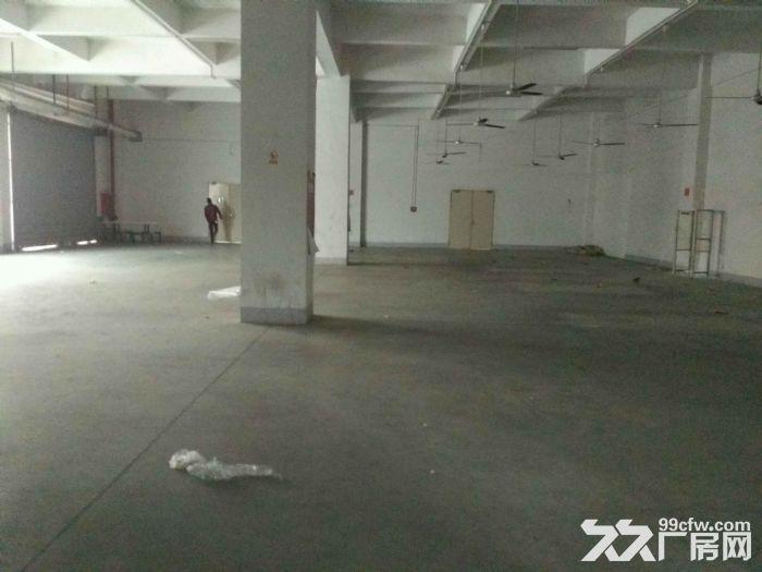 观澜大和天虹附近独院厂房2万平可预定!-图(4)