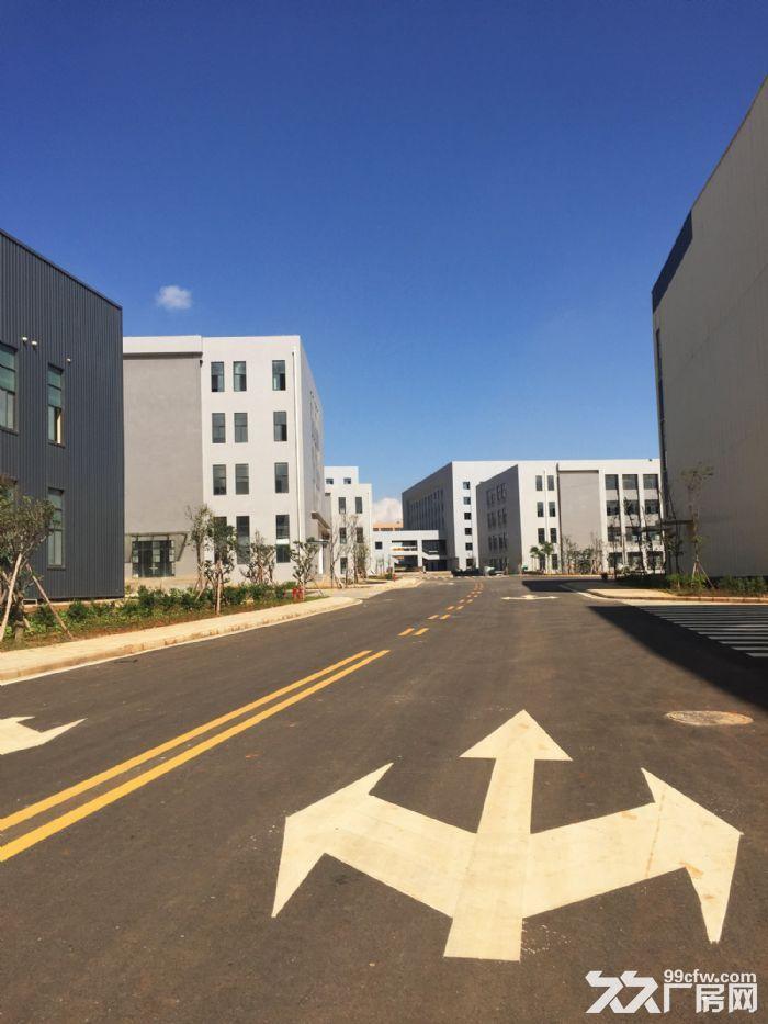 城市主区标准独栋厂房出租、出售-图(4)