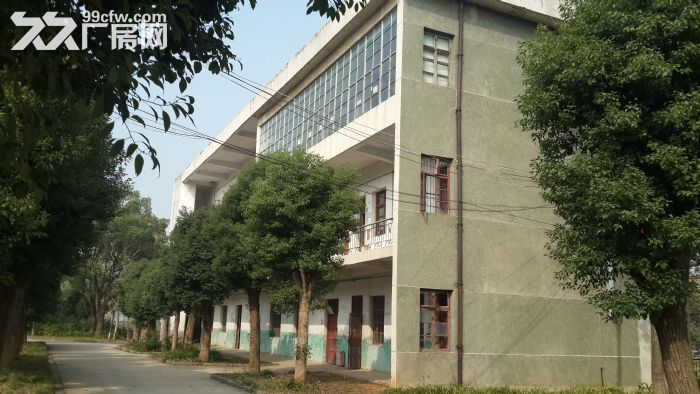 江夏武汉通用汽车基地附近23000平米成熟厂房出租-图(8)