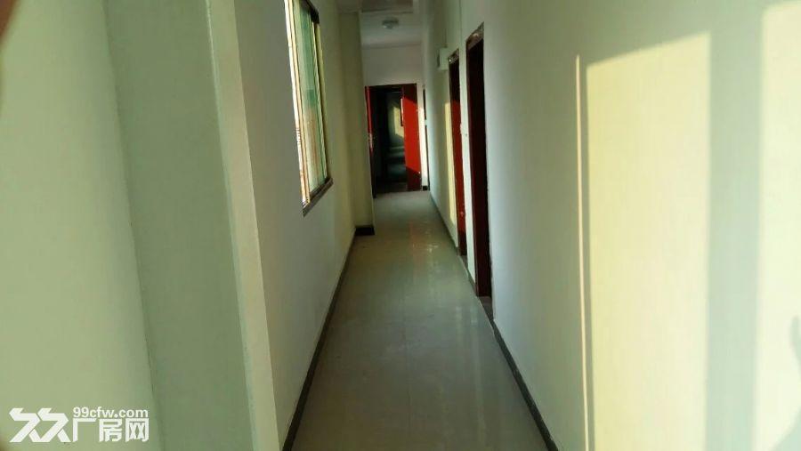 400平方米办公楼出租+空地900平方米出租-图(1)