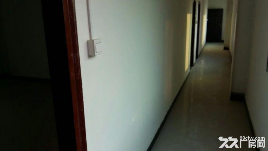 400平方米办公楼出租+空地900平方米出租-图(4)