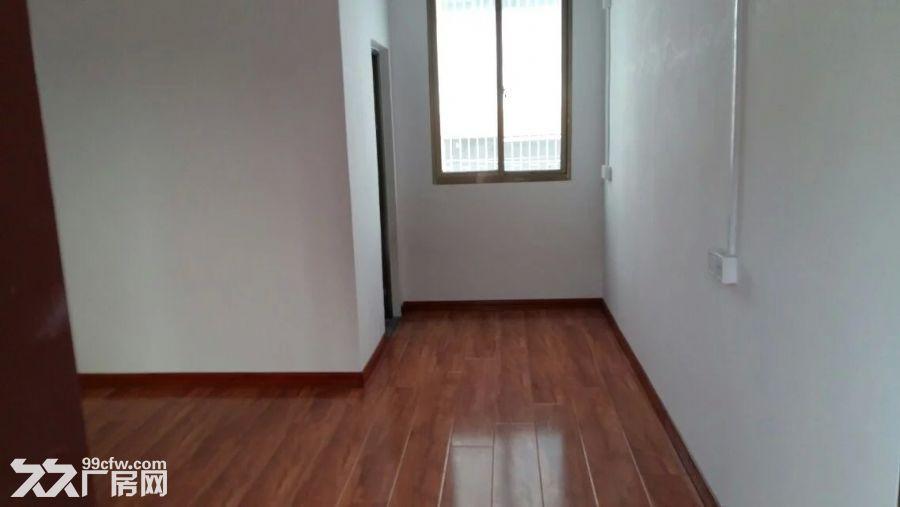 400平方米办公楼出租+空地900平方米出租-图(6)