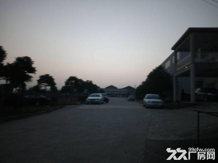 茶岗2000平方米厂房出租,高10米,有行车梁2013年建-图(2)