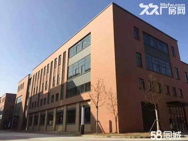 轻钢厂房,独栋办公,高性价比-图(3)