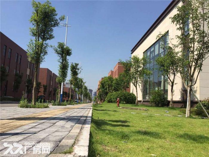 轻钢厂房,独栋办公,高性价比-图(4)