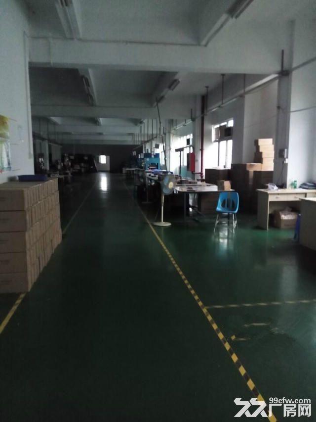 西丽阳光工业区420平方620平方带装修厂房出租-图(1)