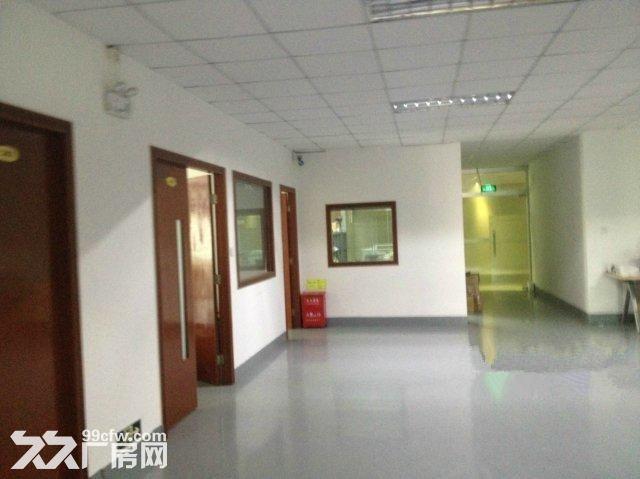 西丽阳光工业区420平方620平方带装修厂房出租-图(2)