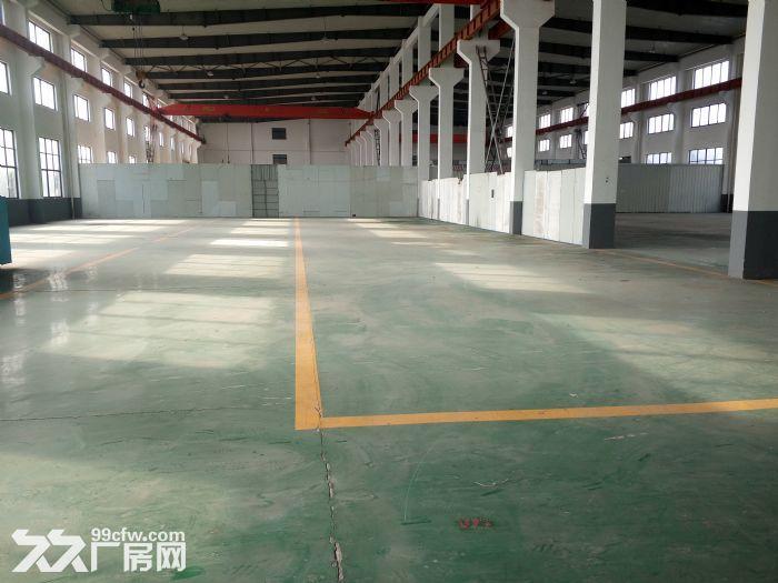 句容4800平方米厂房出租,单层标准厂房,高12米,可分租-图(4)