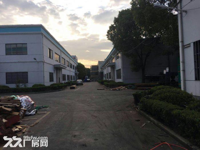 南翔工业区12600平米独院标准厂房仓库出租,可分割!产证齐全,配有办公宿-图(7)