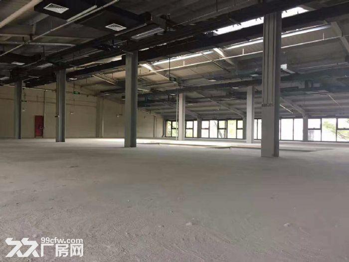 高碑店独栋自空间产业园1300平挑高6米独栋临四惠地铁-图(3)