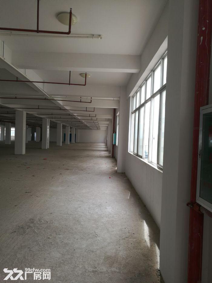 5000平江南经开区银凯工业园核心厂房仅15块一平,可分割租出或出售!-图(6)
