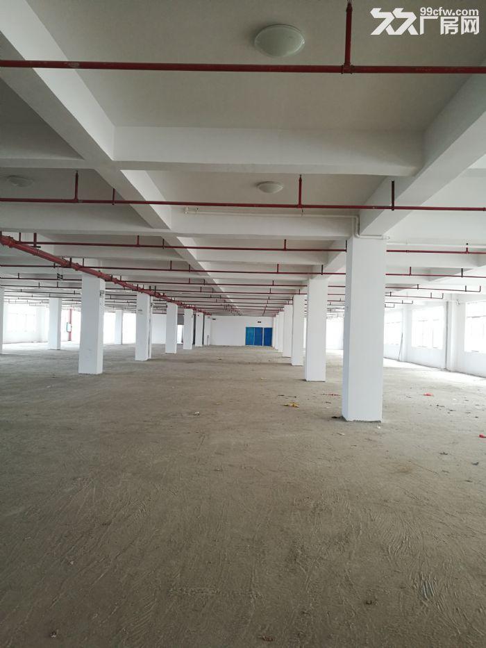 5000平江南经开区银凯工业园核心厂房仅15块一平,可分割租出或出售!-图(8)