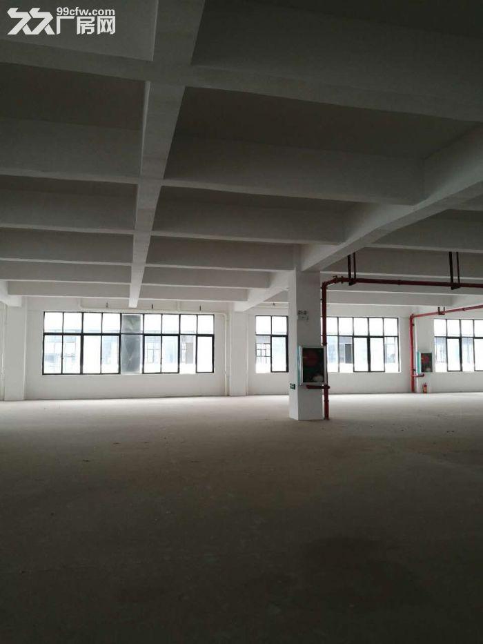 出租或出售800至6000平标准厂房,产业园核心,可进大车-图(5)