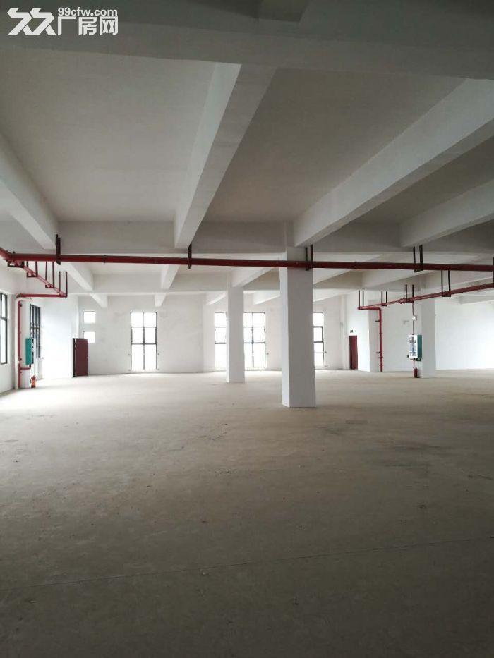 出租或出售800至6000平标准厂房,产业园核心,可进大车-图(7)