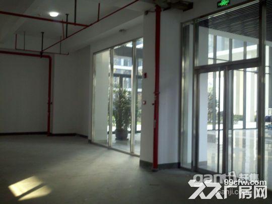 浦江漕河泾高科技园底楼600平厂房出租可办环评-图(3)