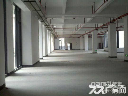 浦江漕河泾高科技园底楼600平厂房出租可办环评-图(2)