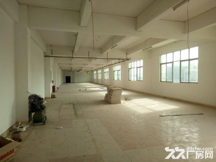 珠海井岸西埔全新装修厂房转让-图(3)