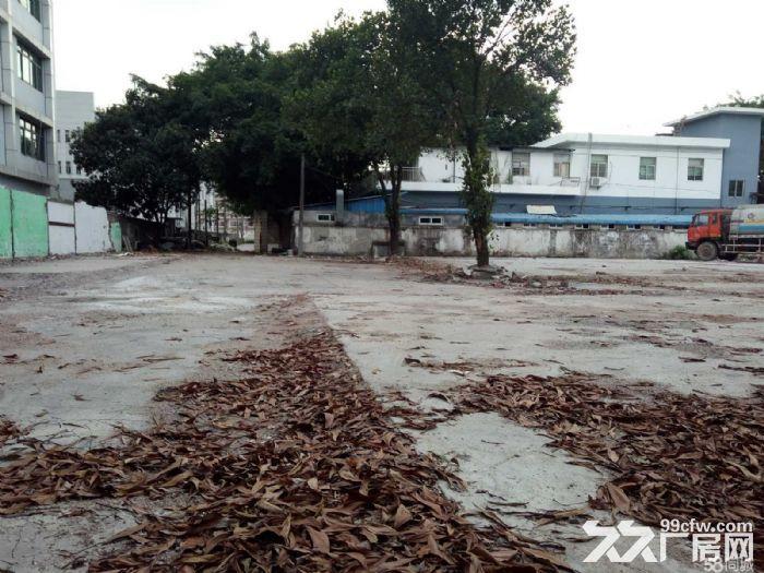 出租龙岗中心地段土地1600平米有水泥地15元/平米-图(1)