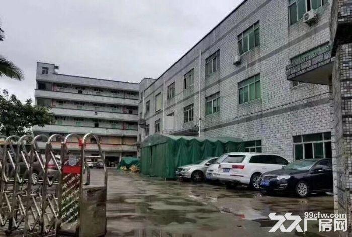 龙岗中心城南通道边新出独院厂房3300(可分租)-图(3)