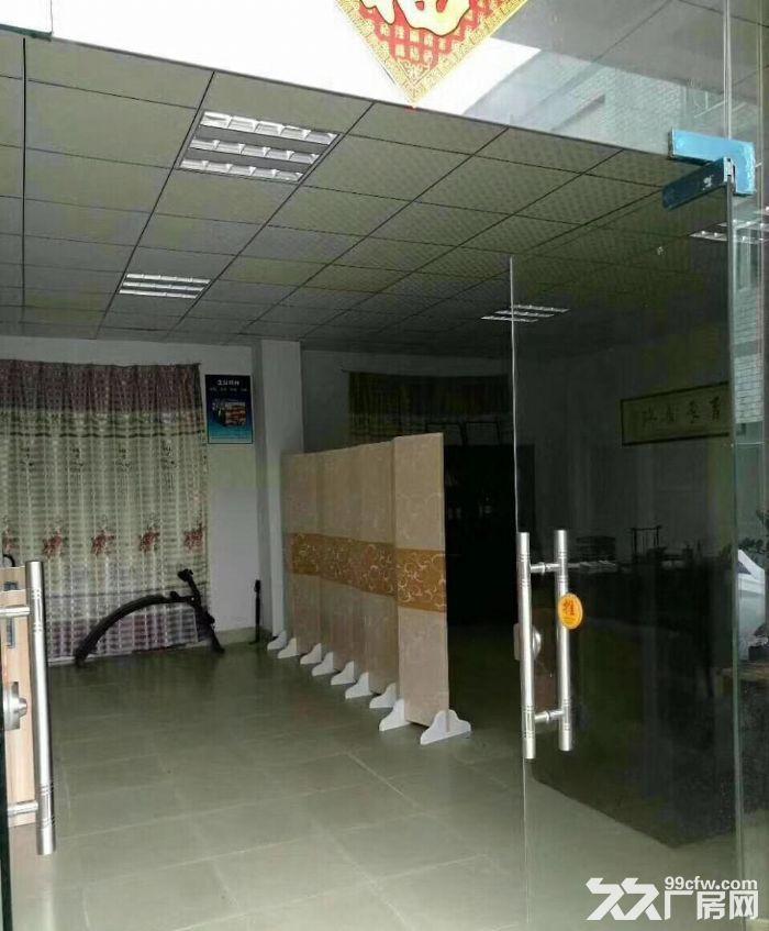 龙岗中心城南通道边新出独院厂房3300(可分租)-图(5)