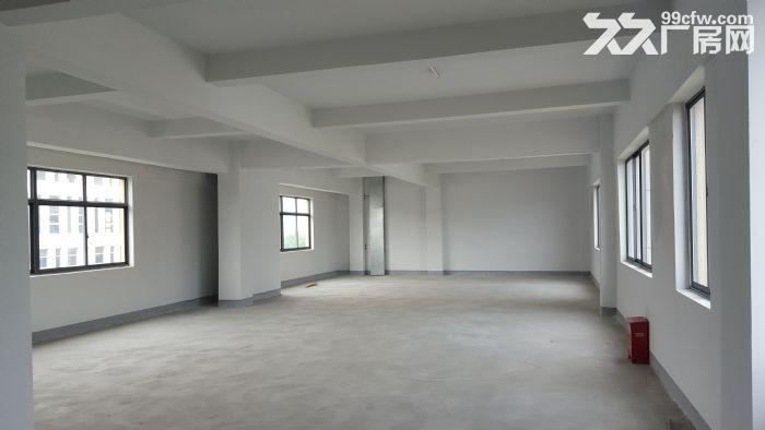 热点!苏州园区湖东一楼2400平米厂房出租-图(1)