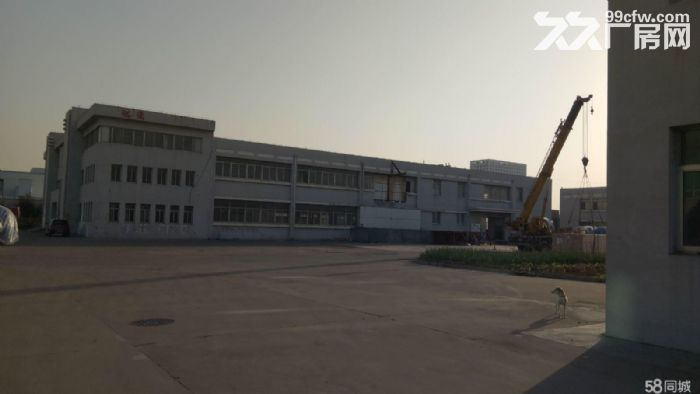 黄岛区黄河路厂房出租招商-图(1)