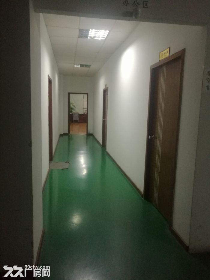 精装办公室厂房分租适合LED电商创业者同益工业区-图(5)