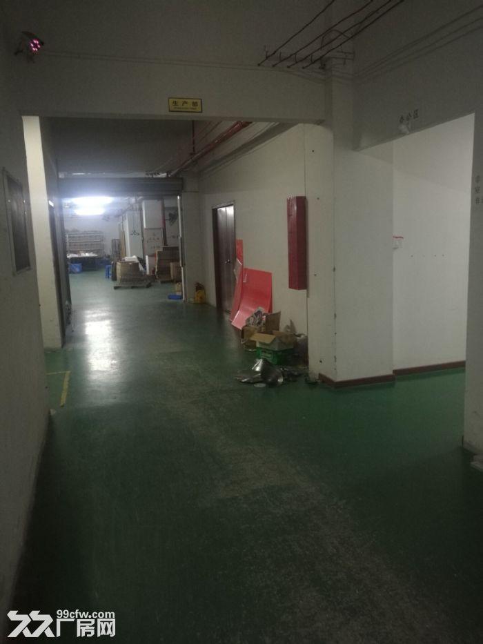 精装办公室厂房分租适合LED电商创业者同益工业区-图(7)
