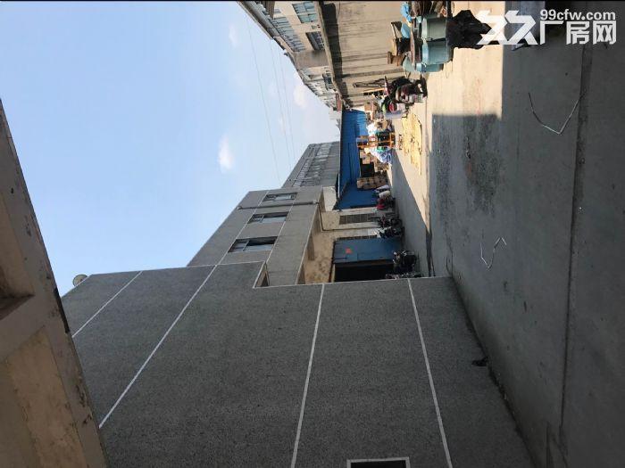礼嘉坂上1700平大厂房出租,交通便利,设施齐全-图(3)