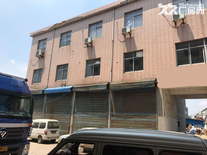 礼嘉坂上1700平大厂房出租,交通便利,设施齐全-图(4)