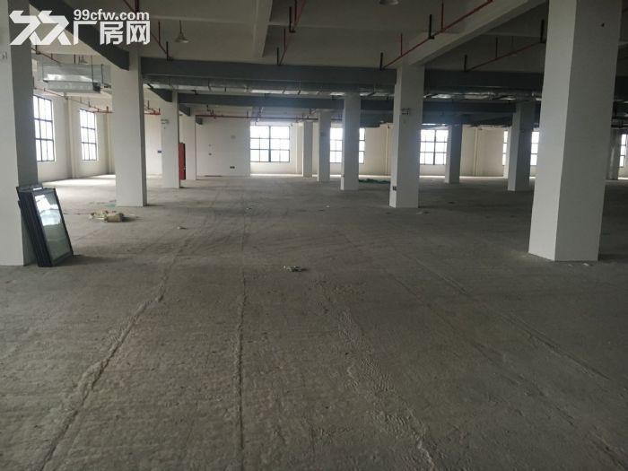 康桥新能源产业园标准厂房及写字楼出租-图(2)