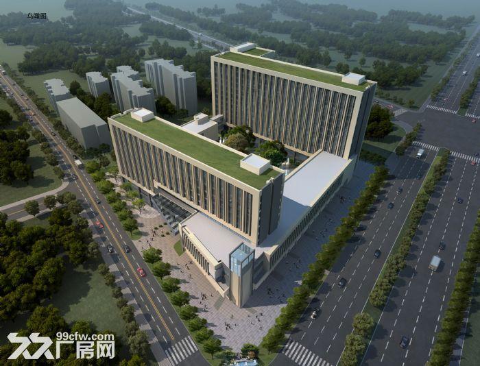 康桥新能源产业园标准厂房及写字楼出租-图(3)