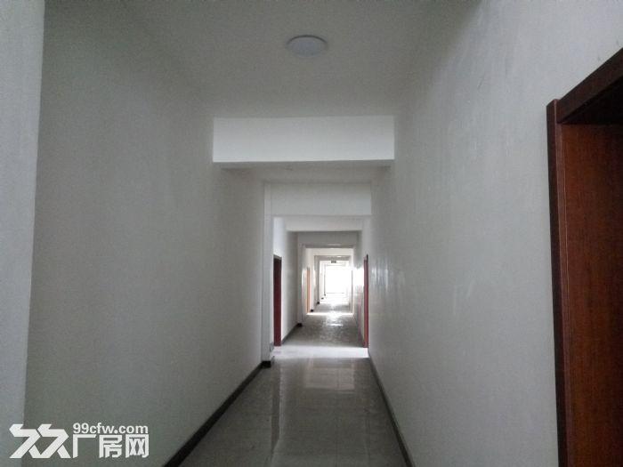 沈北新区虎石台4500平单层厂房出租-图(3)