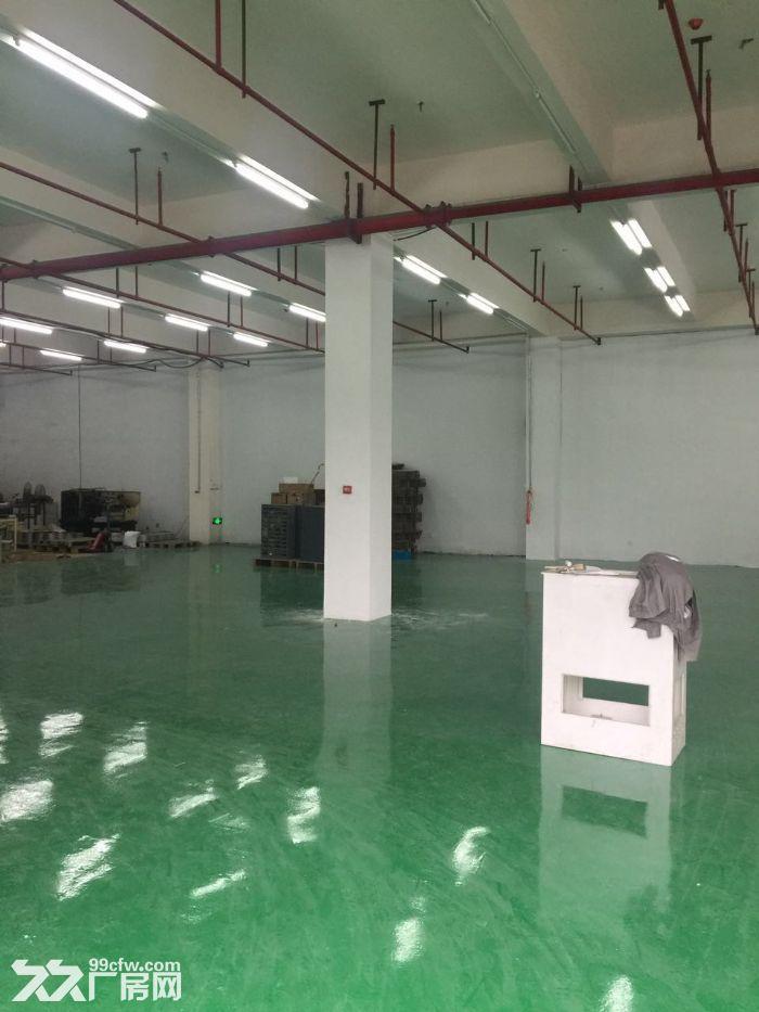 200平至1000平优质全新厂房仓储办公,敞亮型位置优交通便利-图(1)