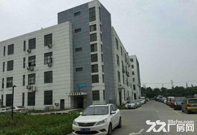 200平至1000平优质全新厂房仓储办公,敞亮型位置优交通便利-图(2)