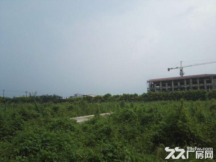 龙泉经开区邻近吉利50亩独门独院工业用地出售-图(2)