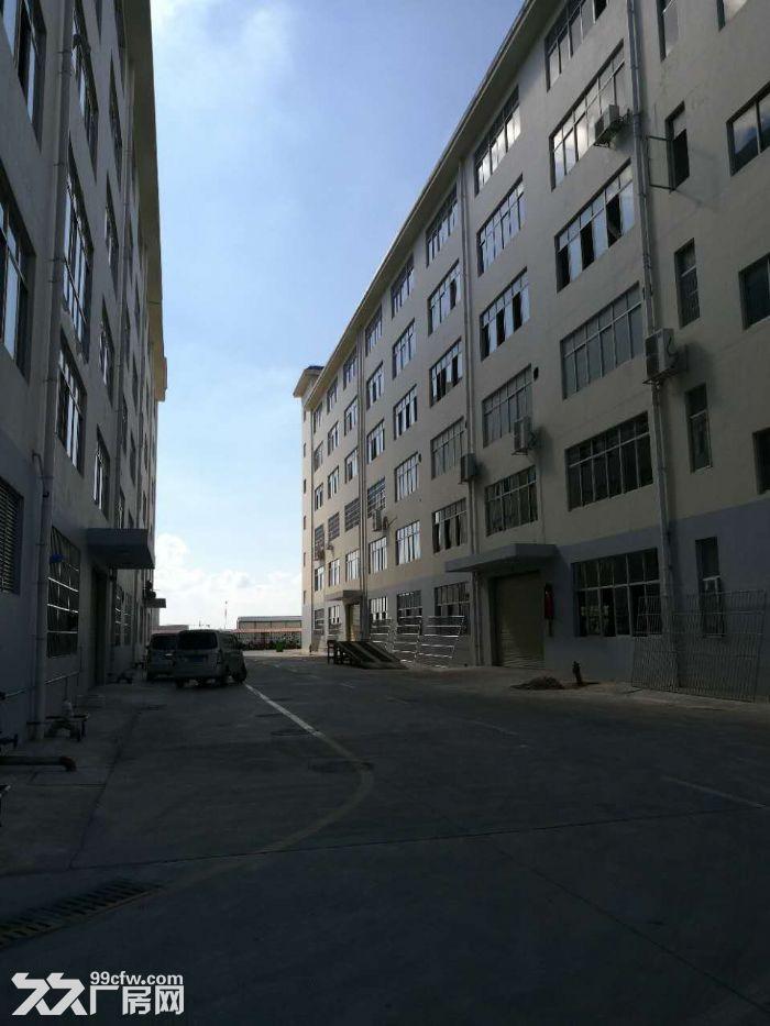 300平起至890平9层标准生产研发工业标准厂房,地铁口物业-图(5)