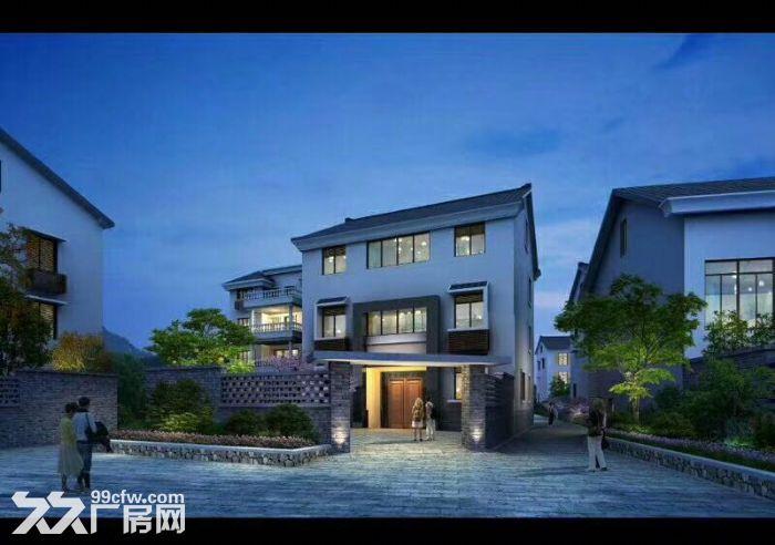 滨江独栋别墅,可办公住宿,文创科技摄影设计贸易入驻-图(3)