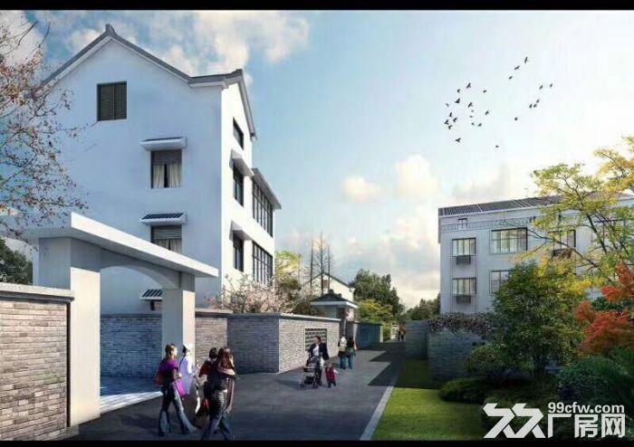 滨江独栋别墅,可办公住宿,文创科技摄影设计贸易入驻-图(6)